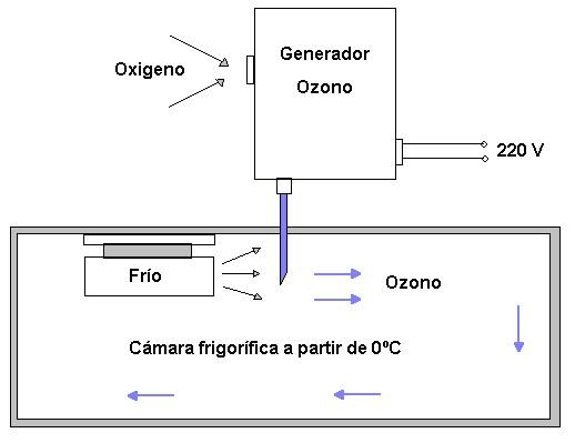Esterilización por ozono